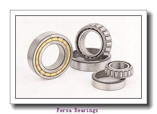 51 mm x 91 mm x 44 mm  Fersa F16076 angular contact ball bearings