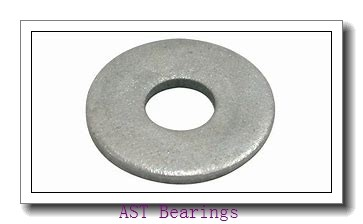 AST NKS65 needle roller bearings