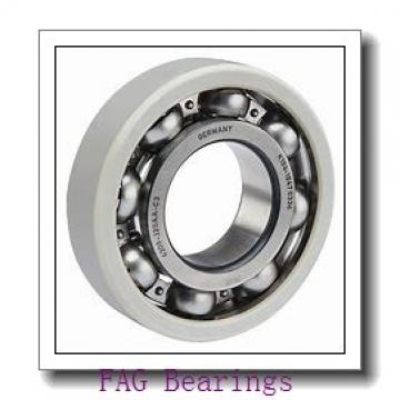 30 mm x 60 mm x 20 mm  FAG F-202973 cylindrical roller bearings